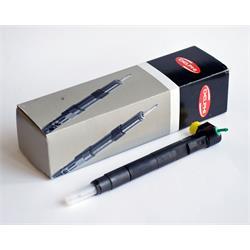 Injektor/Einspritzdüse - DELPHI - Tausch